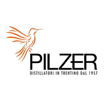 logo_pilzer_OK